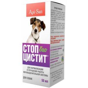 Цистит у собак симптомы