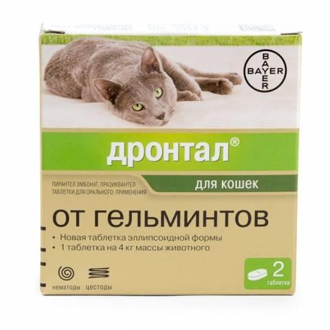 Таблетки от глистов для кошек: когда и как давать, названия ...