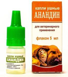 Чем лечить уши у кошек от клещей. Самые эффективные препараты для лечения кошек от ушного клеща. Профилактика ушной чесотки